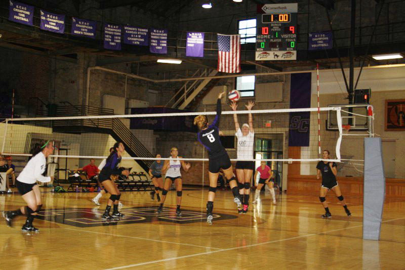 Lady Builders not worried about past seasons