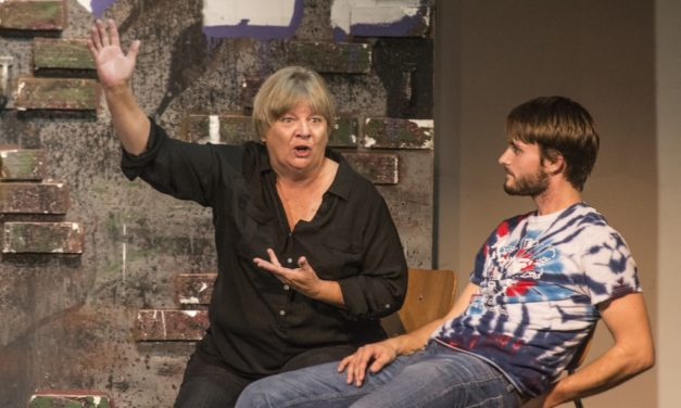 9 Lives entertains community with family-friendly comedy, features faculty (Slideshow)