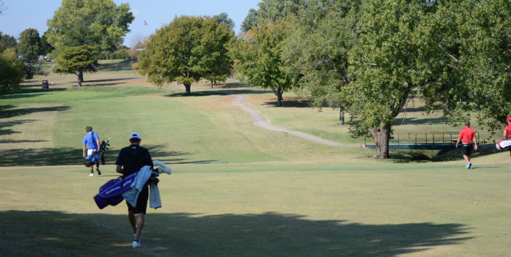 Golf teams fall short in conference tournament play