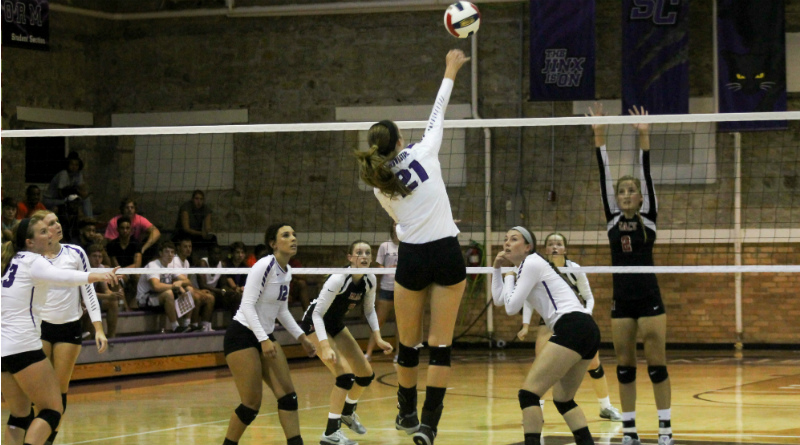 Volleyball ends season with loss to Falcons