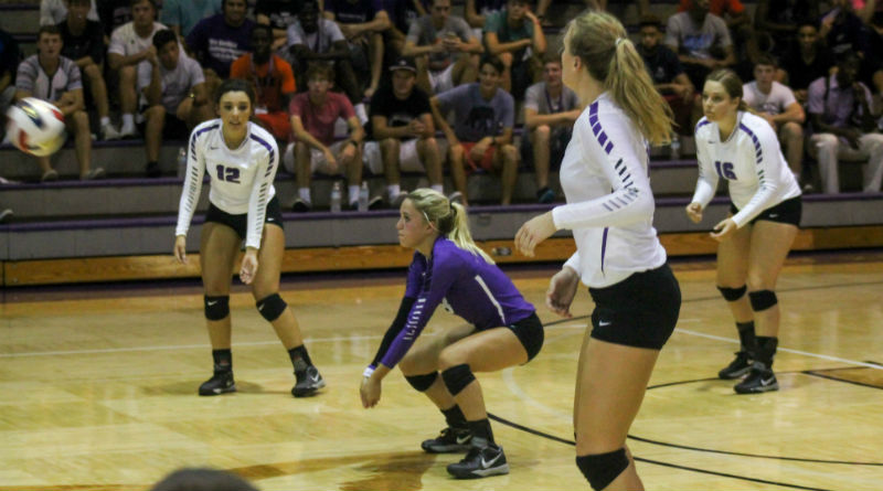 Women's volleyball unable to secure win
