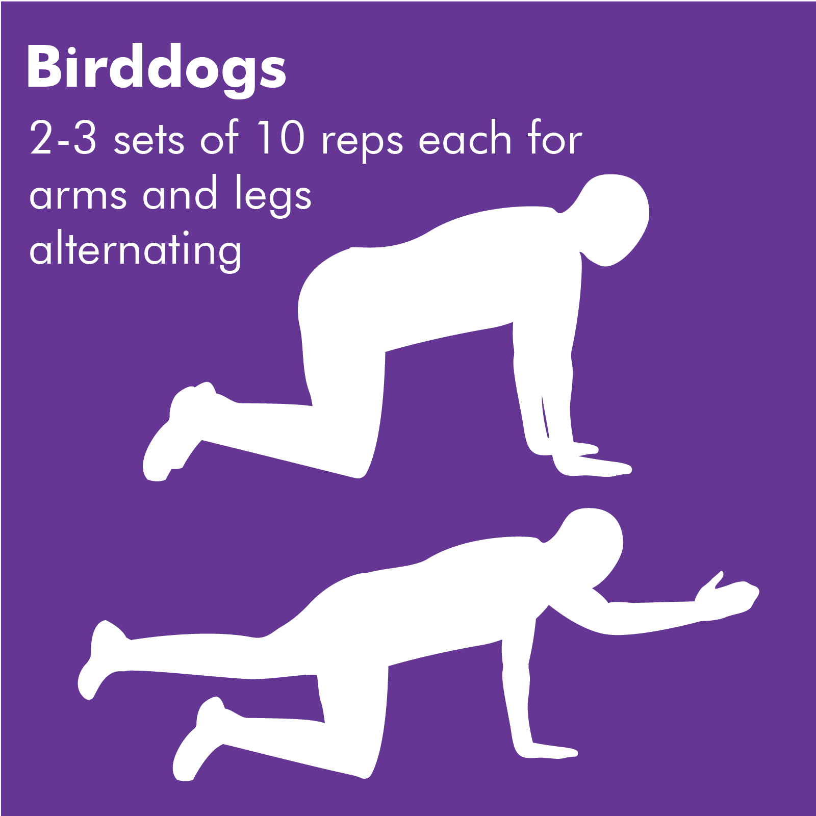 Birddogs is a great exercise for your arms, legs and core. You start on all fours and reach out opposite arm and leg as far as you can, holding for a few seconds, then switching to the other arm and leg.