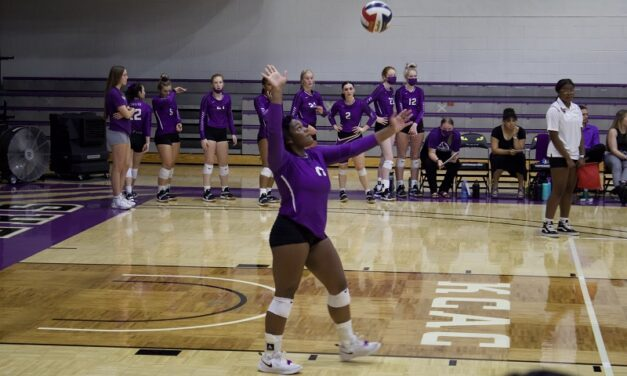 Eagles defeat women's volleyball on home court